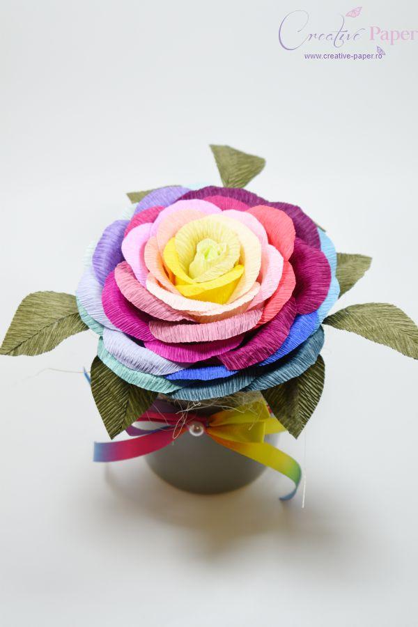 Aranjamente Flori Hartie Curcubeu